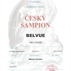Cesky-sampion-Bibi-250x250 Bellridge Belvue