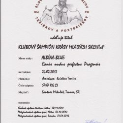 magie-klubovy-jch-250x250 Albína-Blue Canisnudusperfectus Pragensis